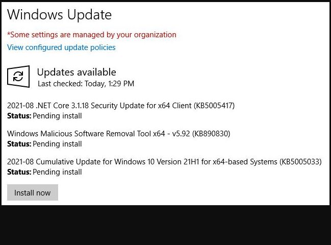Windows 10 Build 19043.1165 Install Button