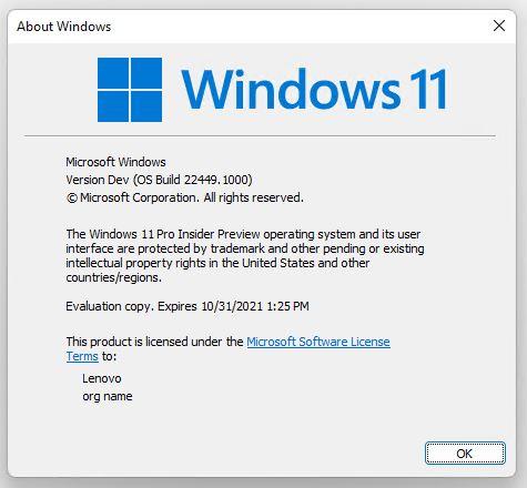 Windows 11 Dev Channel Goes Nickel